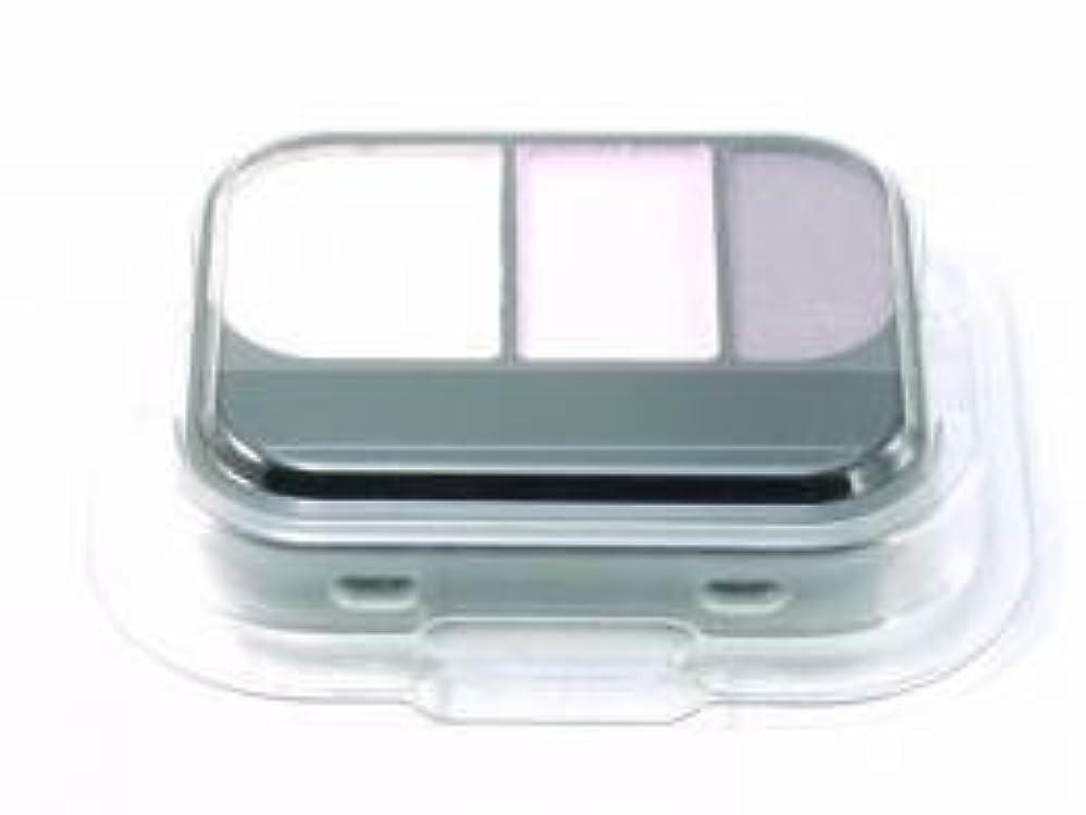 小さいコンセンサス熱アイビー化粧品 エレガンス アイカラーカートリッジ OR-100
