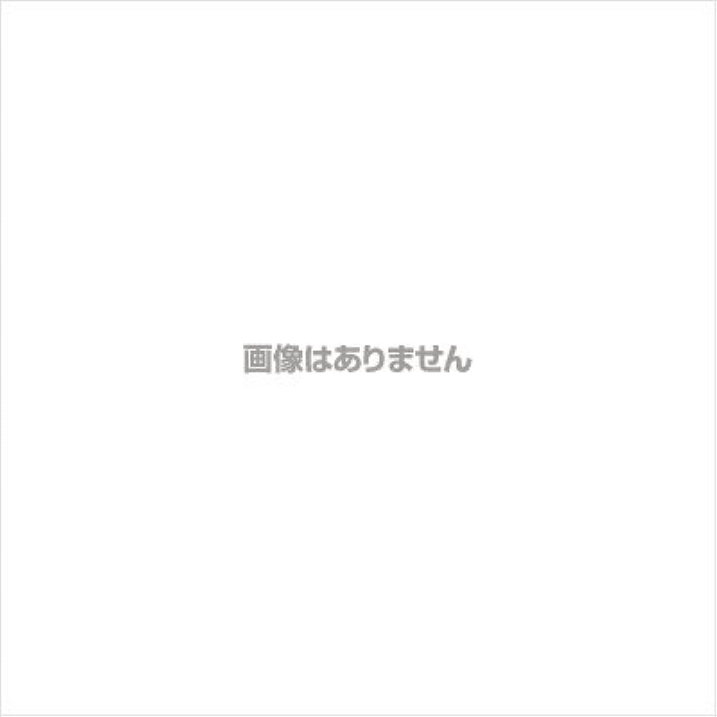 パラメータ資産マエストロ【業務用ケース】ミオボディソープ18L(フェニックス)