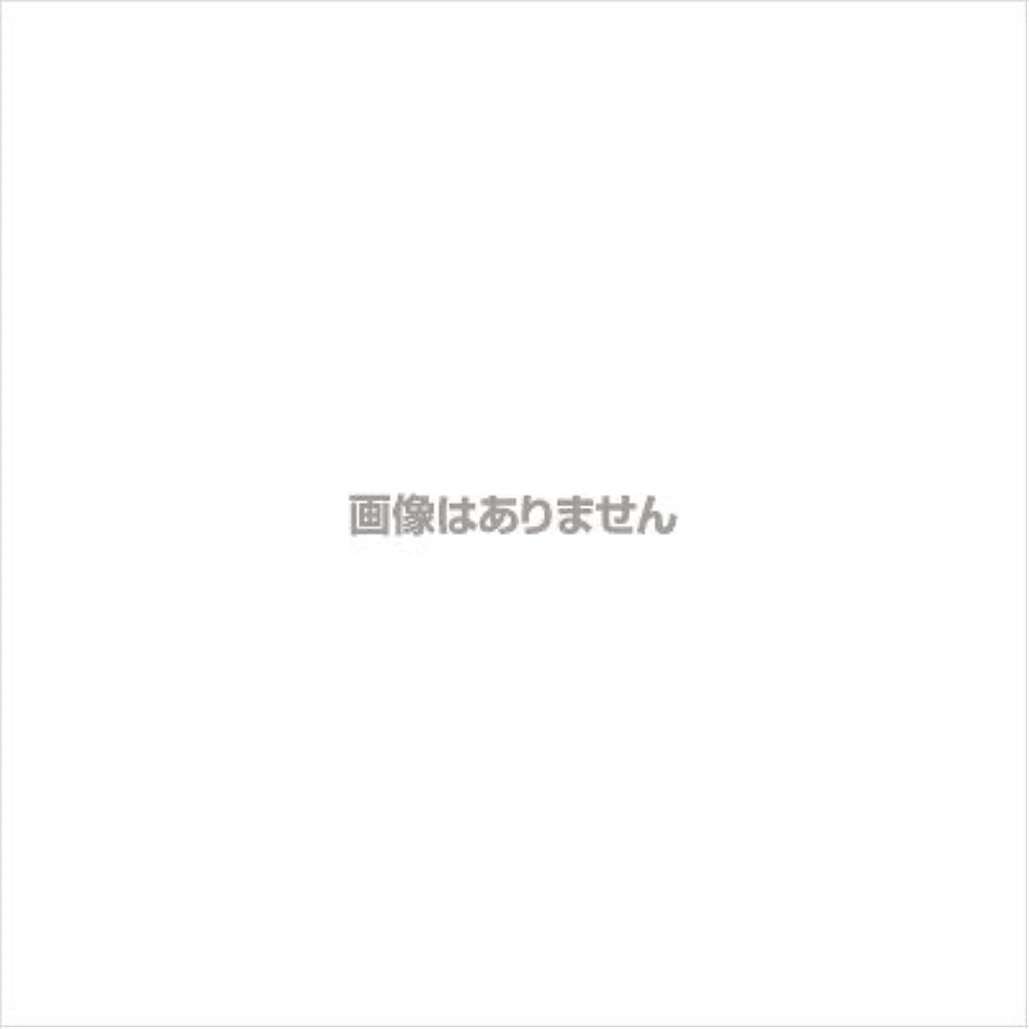 乏しい熟練した爬虫類【業務用ケース】ミオボディソープ18L(フェニックス)