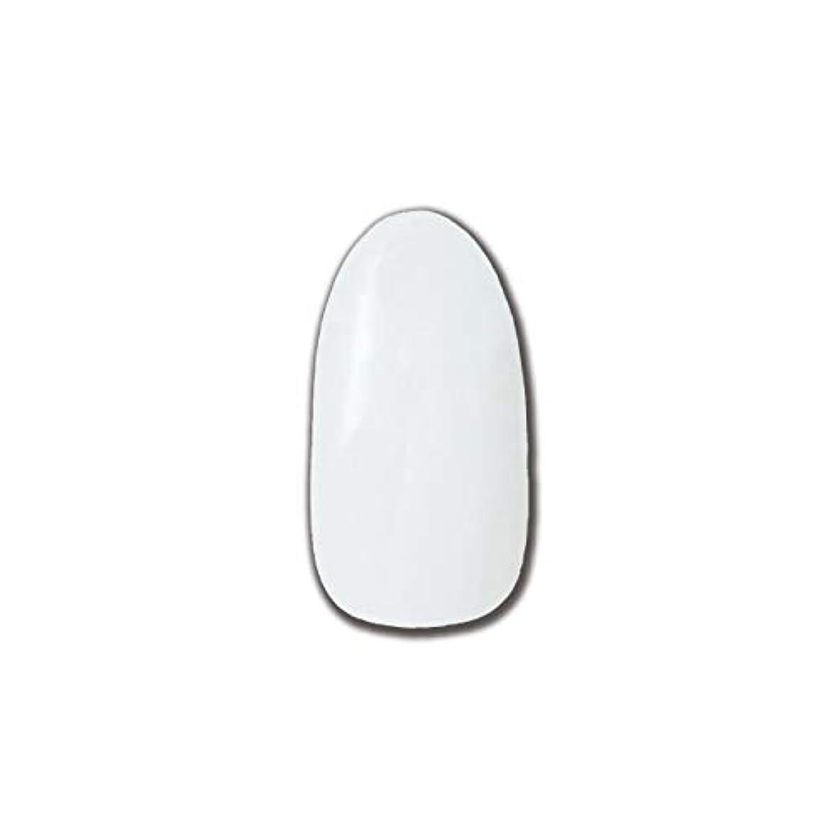 パウダー嫉妬発表T-GEL COLLECTION カラージェル D195 チタンホワイト 4ml
