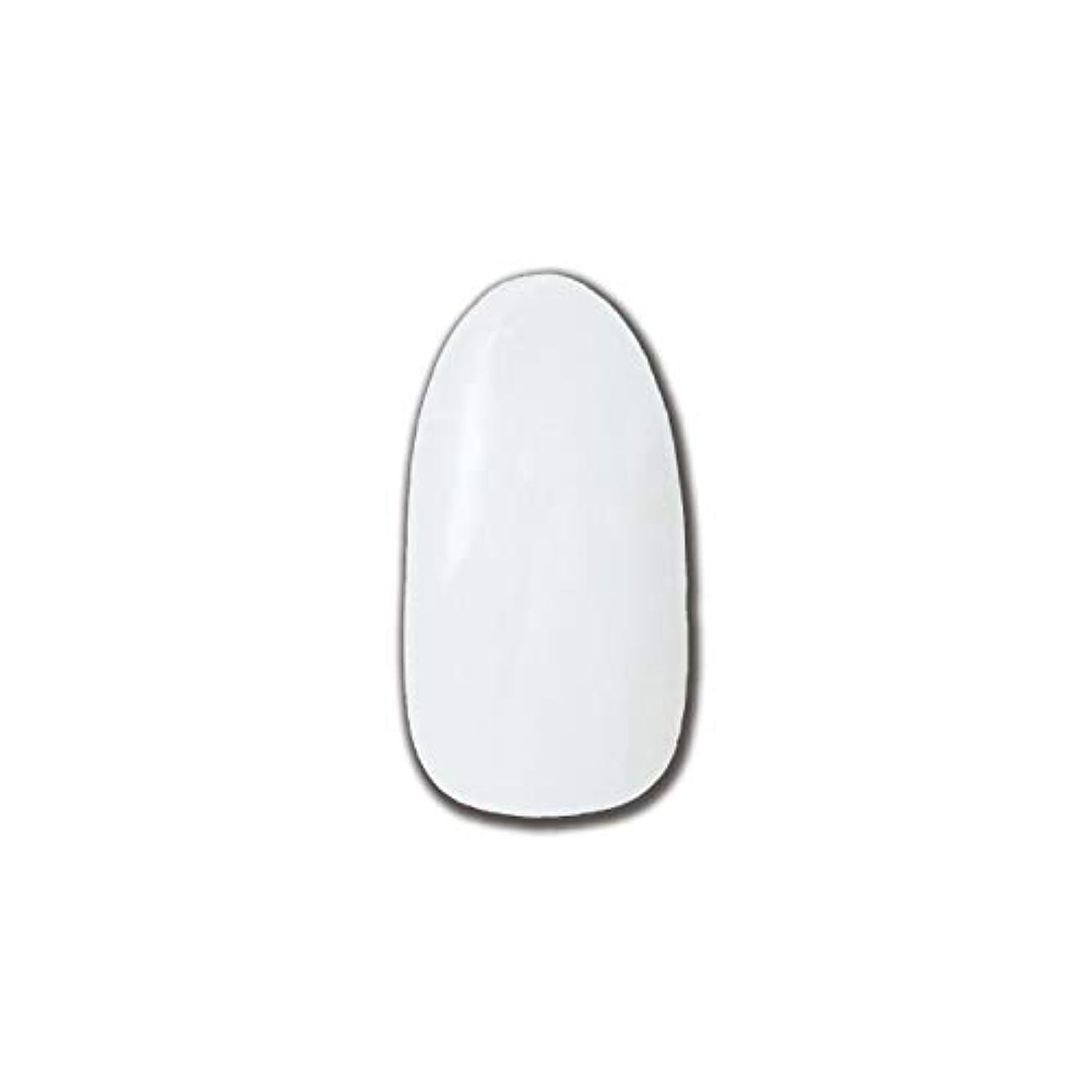 苦味ツール出くわすT-GEL COLLECTION カラージェル D195 チタンホワイト 4ml