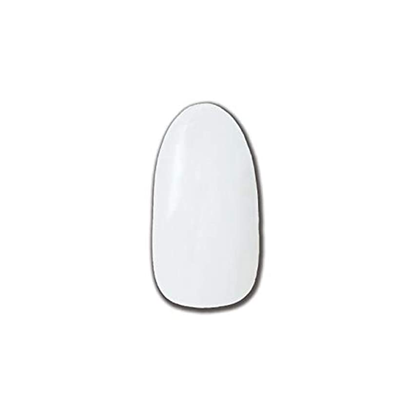 前者タヒチ矩形T-GEL COLLECTION カラージェル D195 チタンホワイト 4ml