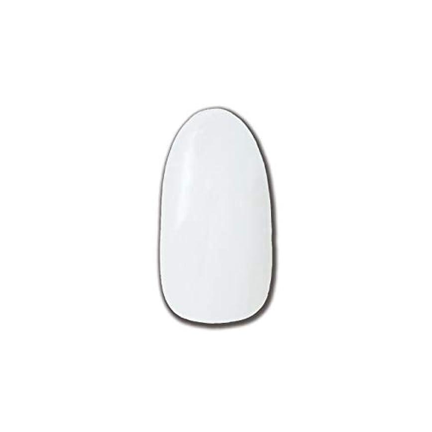 憂鬱環境保護主義者オリエントT-GEL COLLECTION カラージェル D195 チタンホワイト 4ml