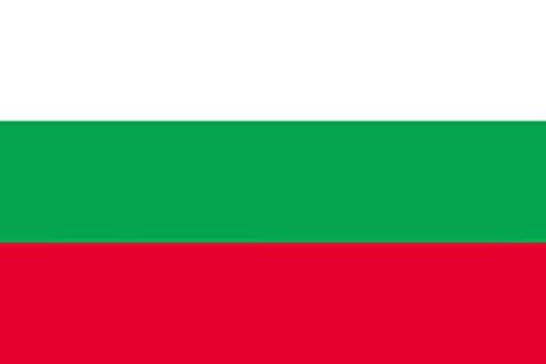 国旗 ブルガリア ミニ No.23389(取寄商品)