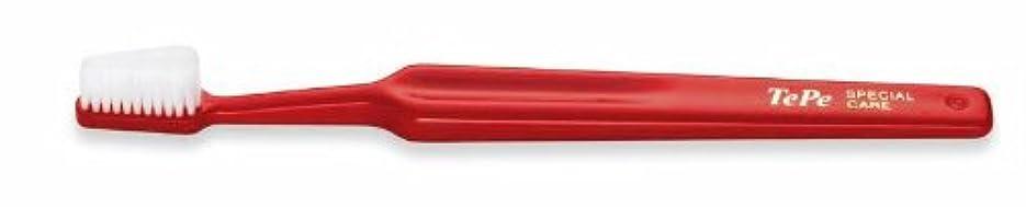 ハミングバードかなり煩わしいテペ 歯ブラシ スペシャルケア アダルト 25本