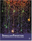 Signals and Perception: The Fundamentals of Human Sensation