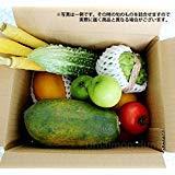美ら島野菜果物お任せセット 果物メインS 鮮度ばっちり 沖縄県産の旬の野菜やフルーツの詰め合わせ
