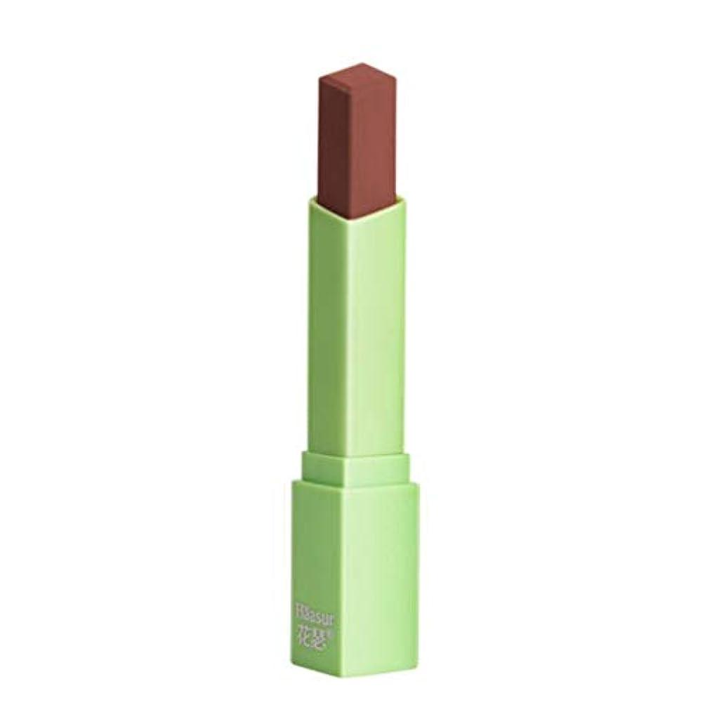 追跡添付伝染性の口紅女性マットリップグロス防水ロングラスティングマットリップスティックメイク美容レッドリップス化粧ポータブル