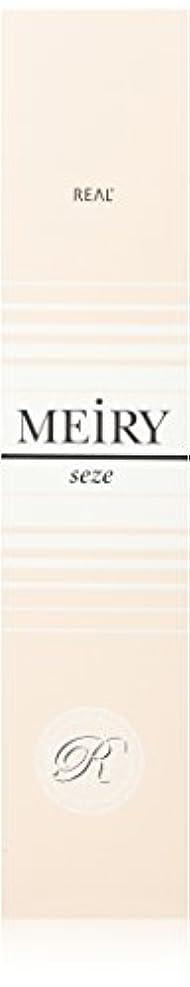 子豚山岳講師メイリー セゼ(MEiRY seze) ヘアカラー 1剤 90g レッド