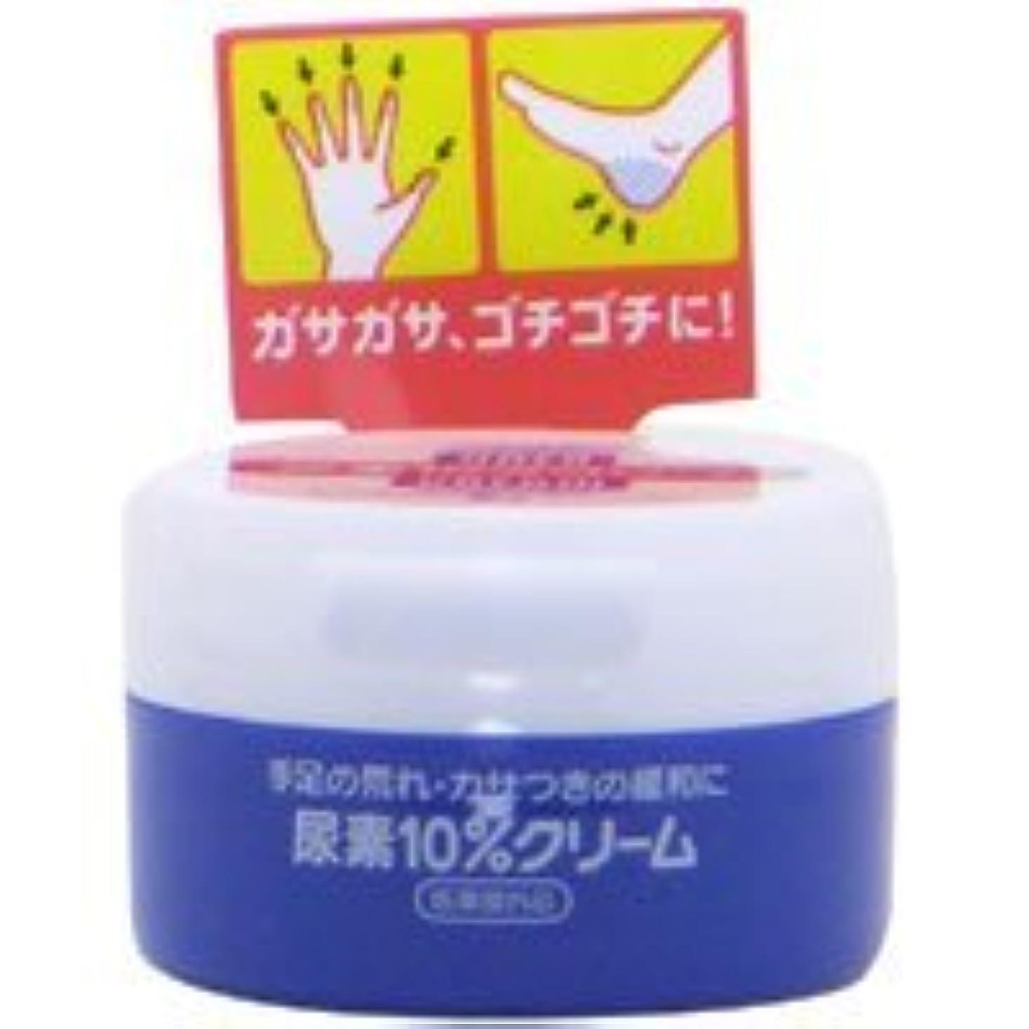 雄大なミニチュアホイスト【エフティ資生堂】尿素10% クリーム ジャー 100g