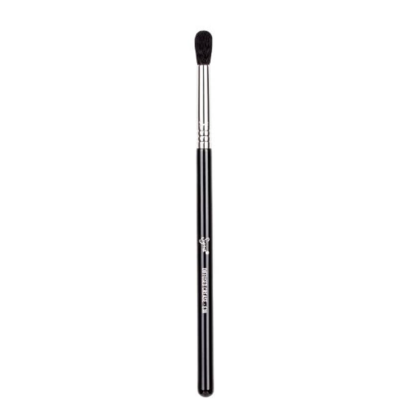死にかけている民族主義悪党Sigma Beauty E38 Diffused Crease Brush -並行輸入品