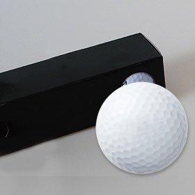 【富有柿(岐阜)】のイラストを印刷してお届け!無地専用ゴルフボール(3球入)