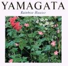 虹の狩人―ヒロ・ヤマガタ画集