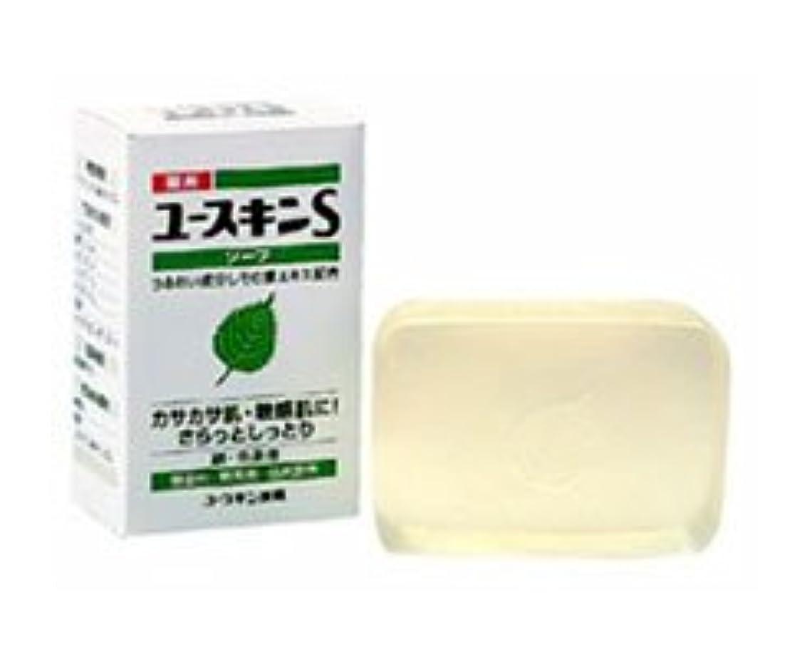 アラスカメロドラマ白菜ユースキンSソープ 90g×(12セット)