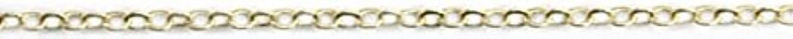 プライム六分儀細部プリティーネイル ネイルアートパーツ ツイストチェーンSS ゴールド 1m 1個