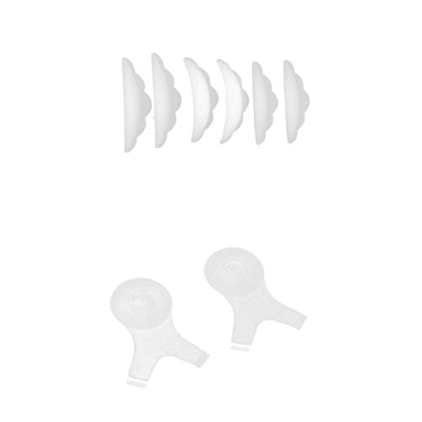 アサート無傷鋸歯状まつげパーマ まつ毛パーシングブラシ まつげパッド 8個入り