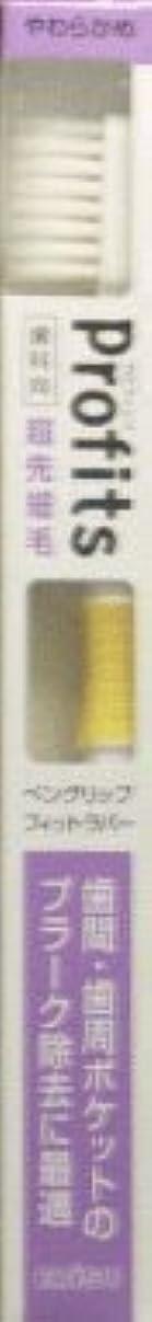 シダ拒絶するデクリメントプロフィッツK31・やわらかめ1本×2 377