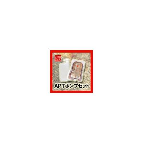 日本グランデックス ALTISOLAアルティゾラ 和漢彩染 APTヘアソープ 500ml+ディスペンサーセット