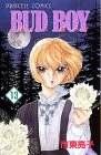 Bud Boy (13) (Princess comics)
