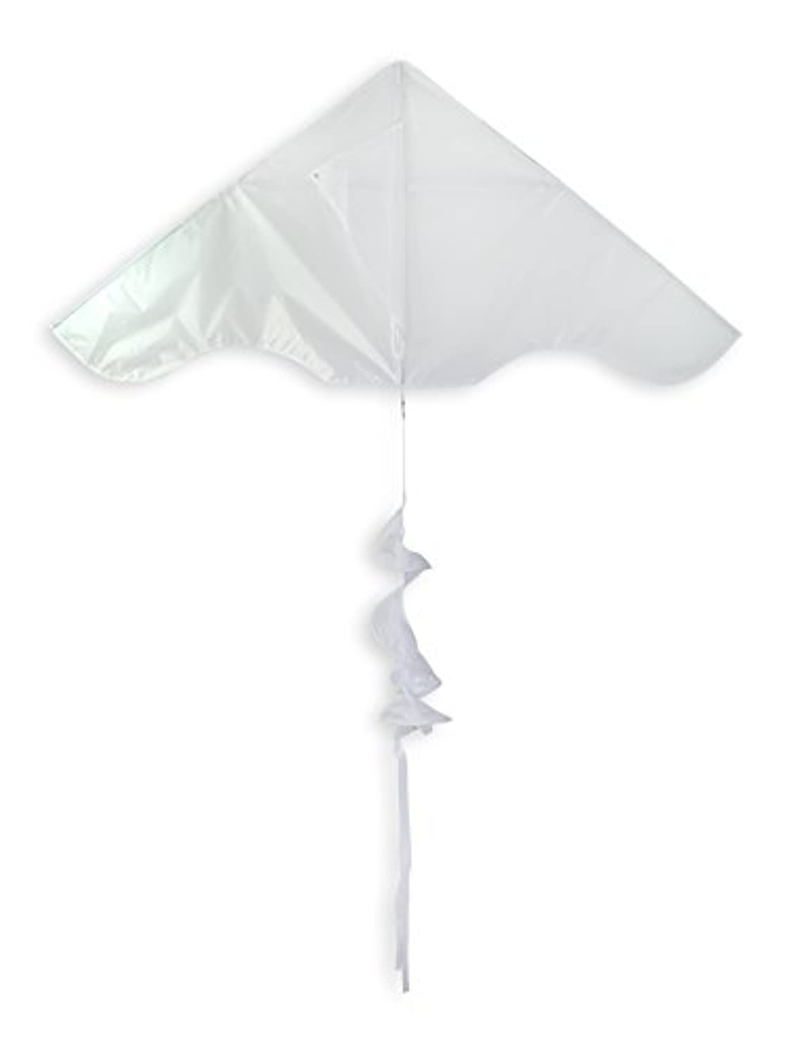 In the BreezeカラーブロックDelta Kite withツイスターtail- Single Line Kite – 55-inch、ホワイト