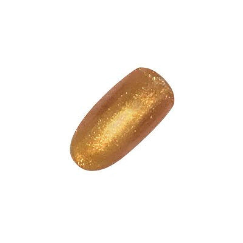 フランクワースリー雑種職業アイニティ カラージェル 040 イエローゴールド 5g
