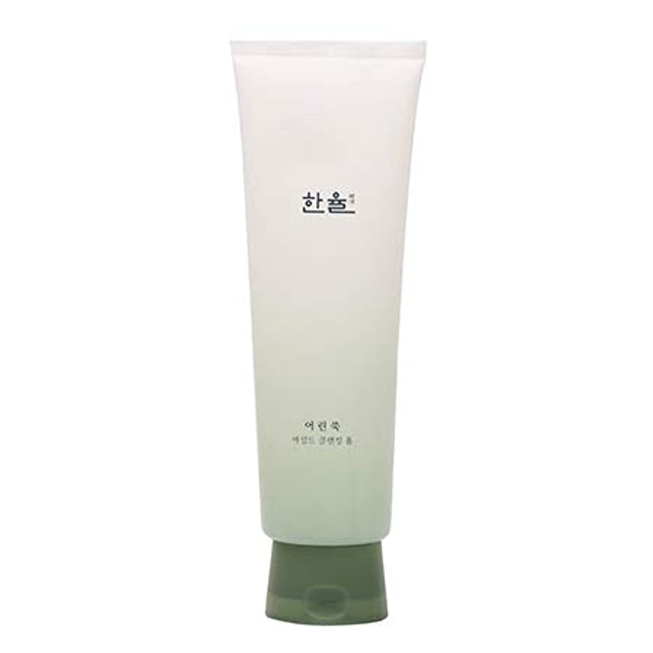 ダイジェスト胸先生ハンユル HANYUL ピュア ヨモギ マイルド クレンジングフォーム Pure Artemisia Mild Cleansing Foam 170ml [並行輸入品]