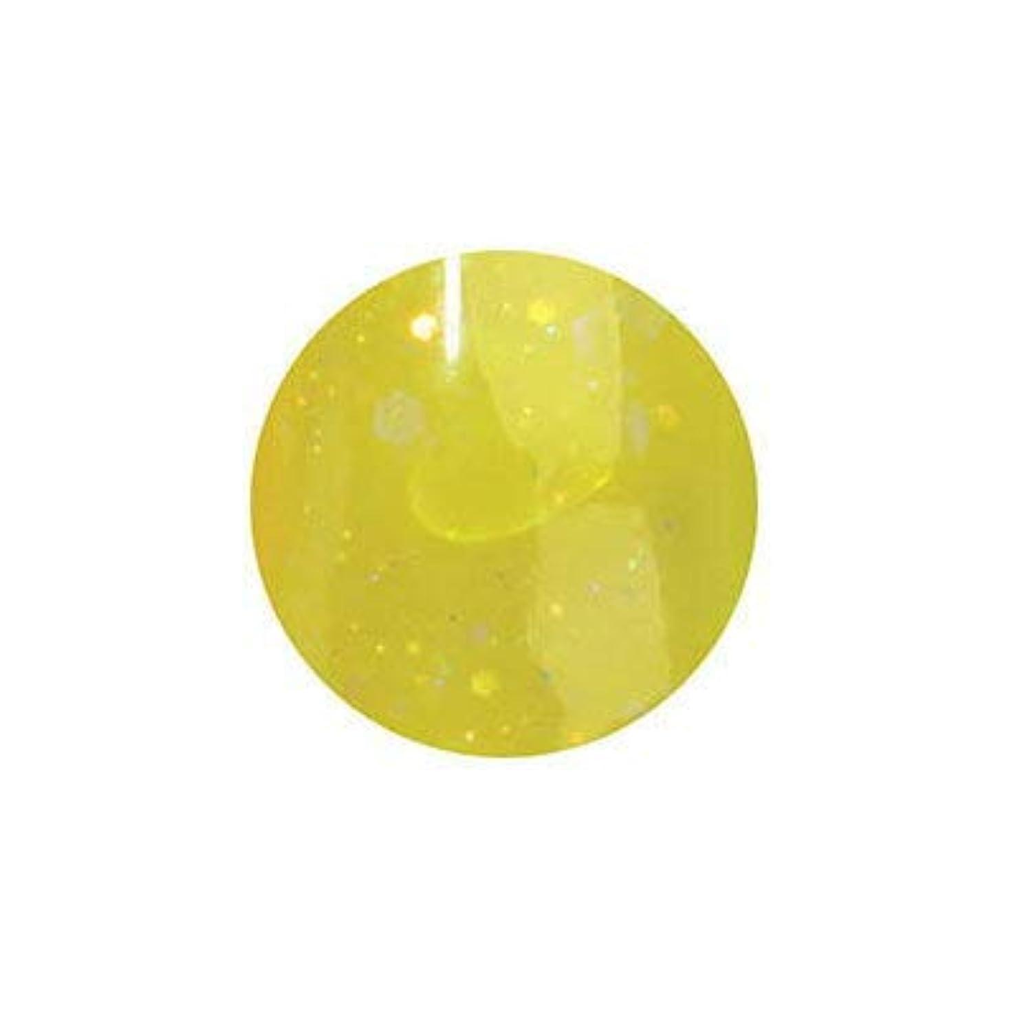 送金球状類人猿ミス ミラージュ byなかやまちえこ ソークオフジェル NW45 5g