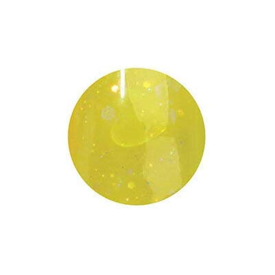 絶妙サーキュレーションペルソナミス ミラージュ byなかやまちえこ ソークオフジェル NW45 5g