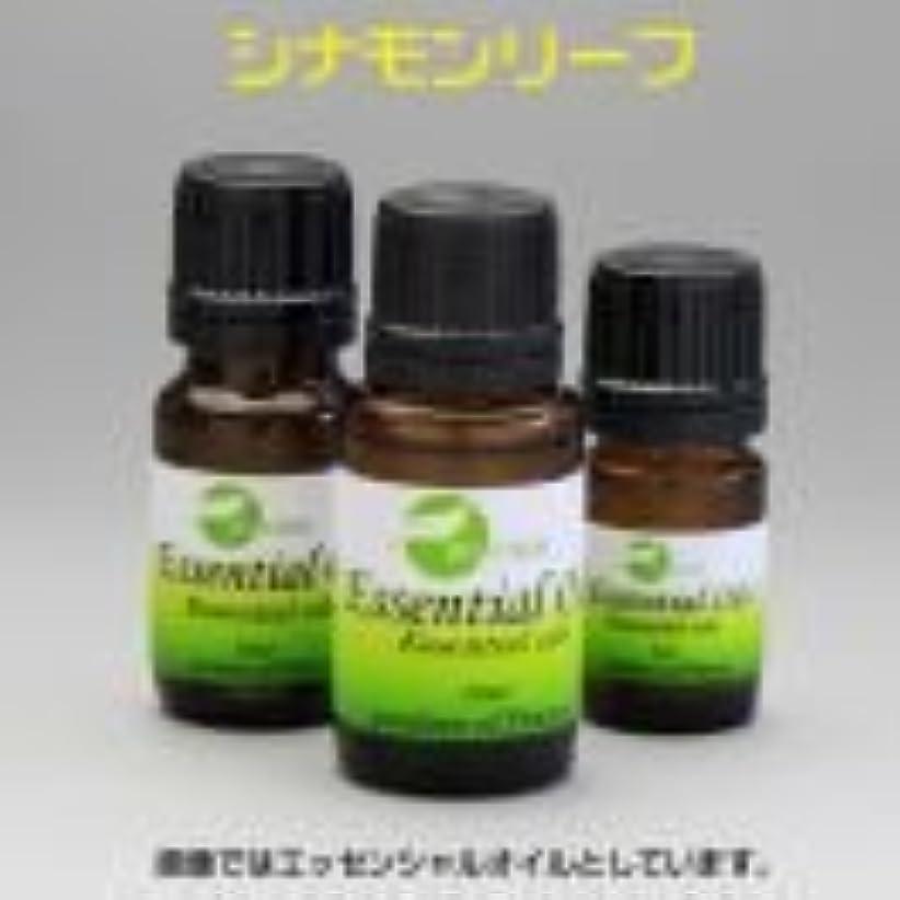 採用出くわす文化[エッセンシャルオイル] スパイシーで温かみを感じる香り シナモン リーフ 15ml
