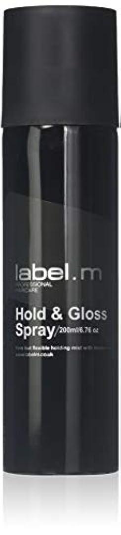 トランクライブラリ精巧な陰謀Label.M Professional Haircare 200MLホールド&グロススプレーLabel.M
