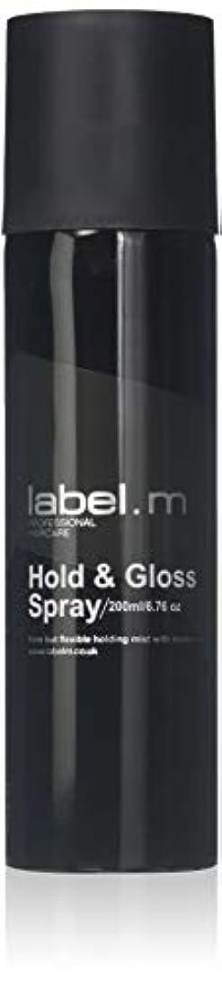銛放つ使い込むLabel.M Professional Haircare 200MLホールド&グロススプレーLabel.M