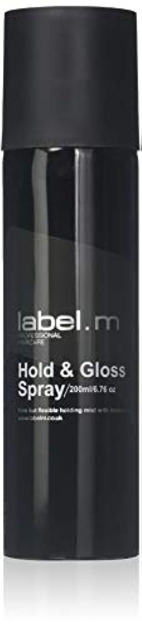 きょうだいふつう凶暴なLabel.M Professional Haircare 200MLホールド&グロススプレーLabel.M