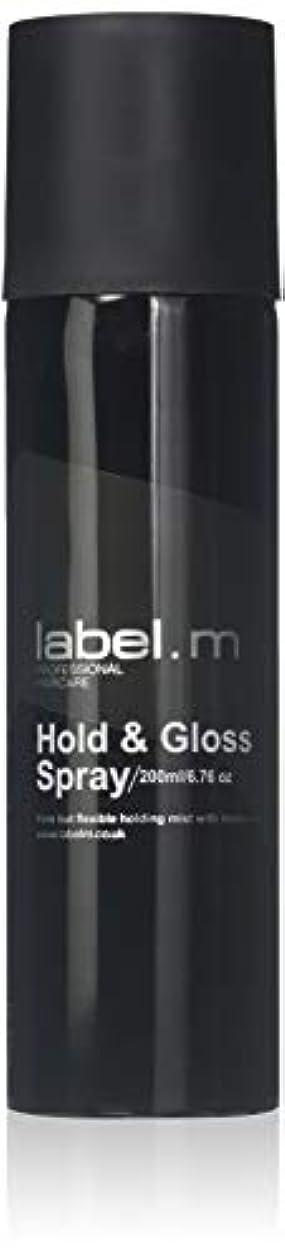 ノベルティ強大な概要Label.M Professional Haircare 200MLホールド&グロススプレーLabel.M