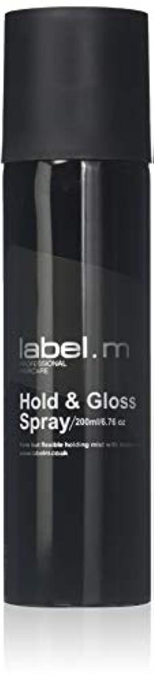天井ぜいたくマーガレットミッチェルLabel.M Professional Haircare 200MLホールド&グロススプレーLabel.M