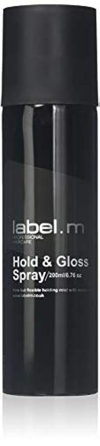 懸念ピストルエンジニアリングLabel.M Professional Haircare 200MLホールド&グロススプレーLabel.M