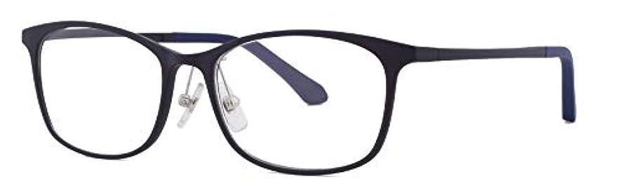 FEELLIFE リーディンググラス FLM-200-2 軽量樹脂フレーム メンズ +1.00