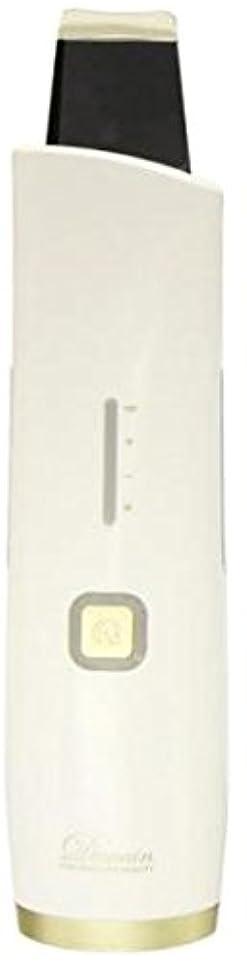 乳製品に対して雄弁なウォーターピーリング美顔器 DeMain デュマン HN-250PL