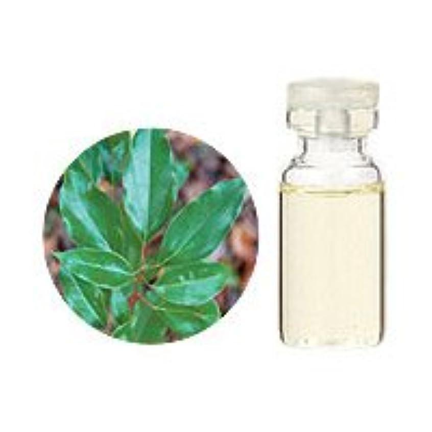 シフトシーケンス高い生活の木 ホーリーフ100ml エッセンシャルオイル/精油