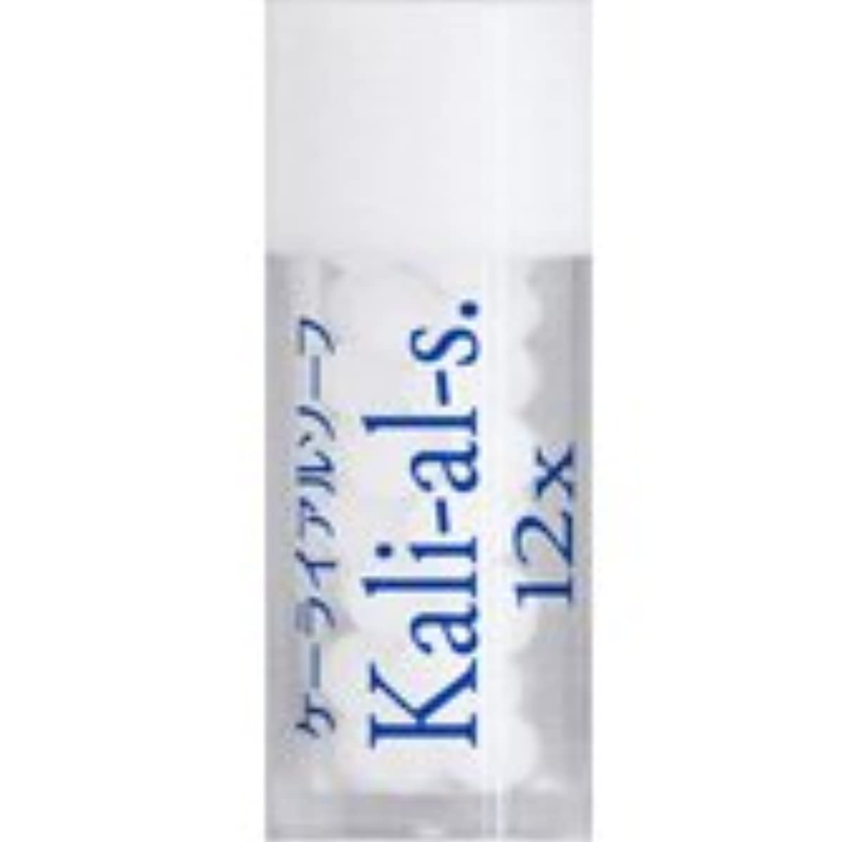 入学する襲撃隔離する36バイタルエレメントキット 対応 各種 (17)Kali-al-s.12X ケーライアルソーフ)