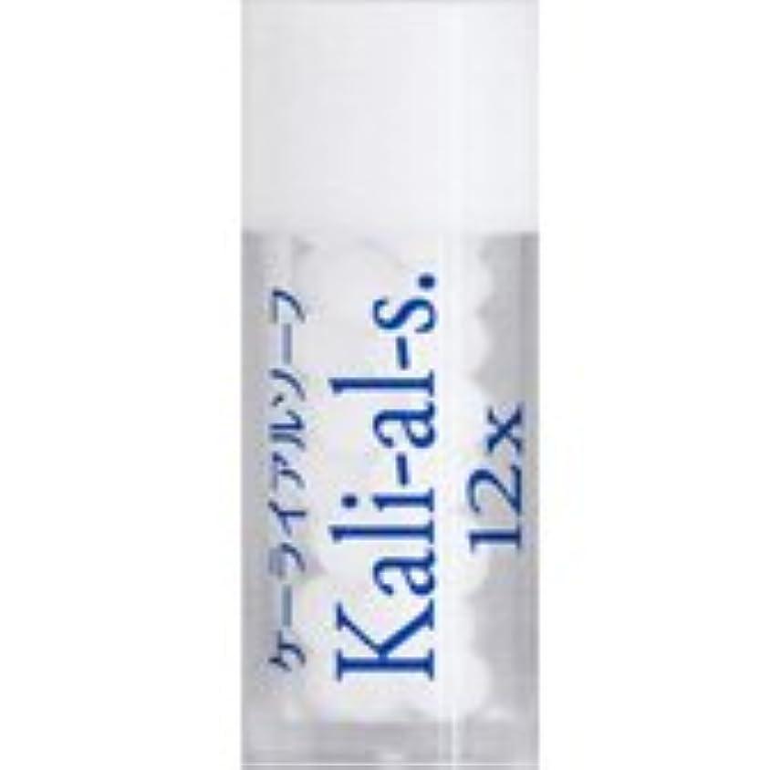 ステートメント手配する縁36バイタルエレメントキット 対応 各種 (17)Kali-al-s.12X ケーライアルソーフ)
