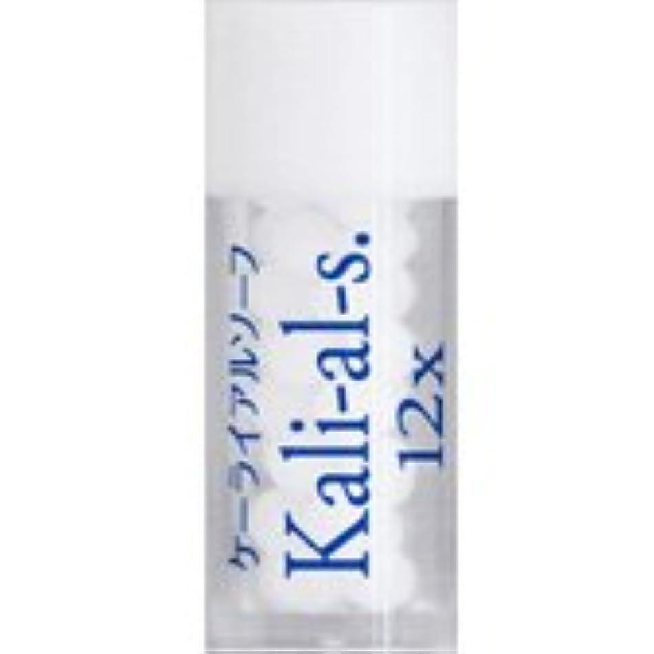 怠惰電報ドラフト36バイタルエレメントキット 対応 各種 (17)Kali-al-s.12X ケーライアルソーフ)