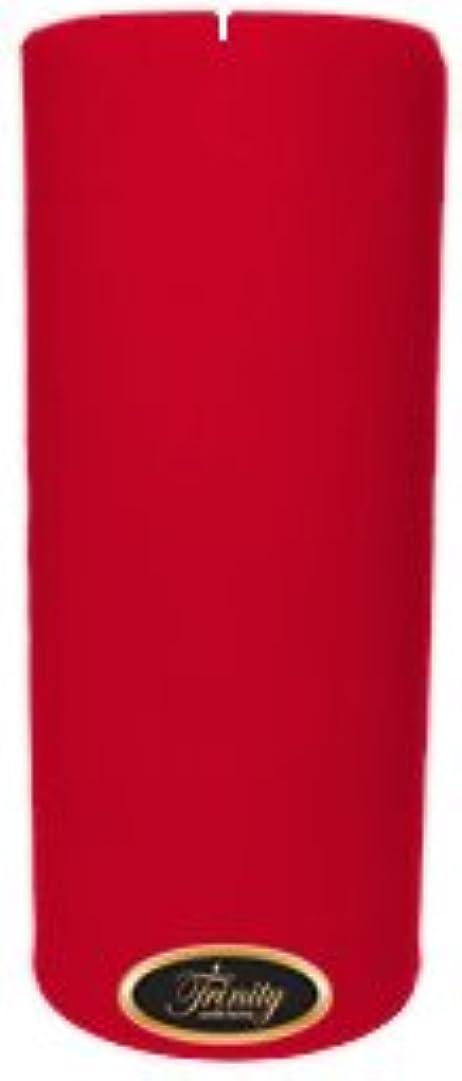 ヒロイン抜粋放置Trinity Candle工場 – Holiday Cheer – Pillar Candle – 4 x 9