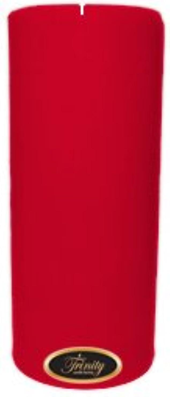 こしょう文明化交じるTrinity Candle工場 – Holly Berry – Pillar Candle – 4 x 9