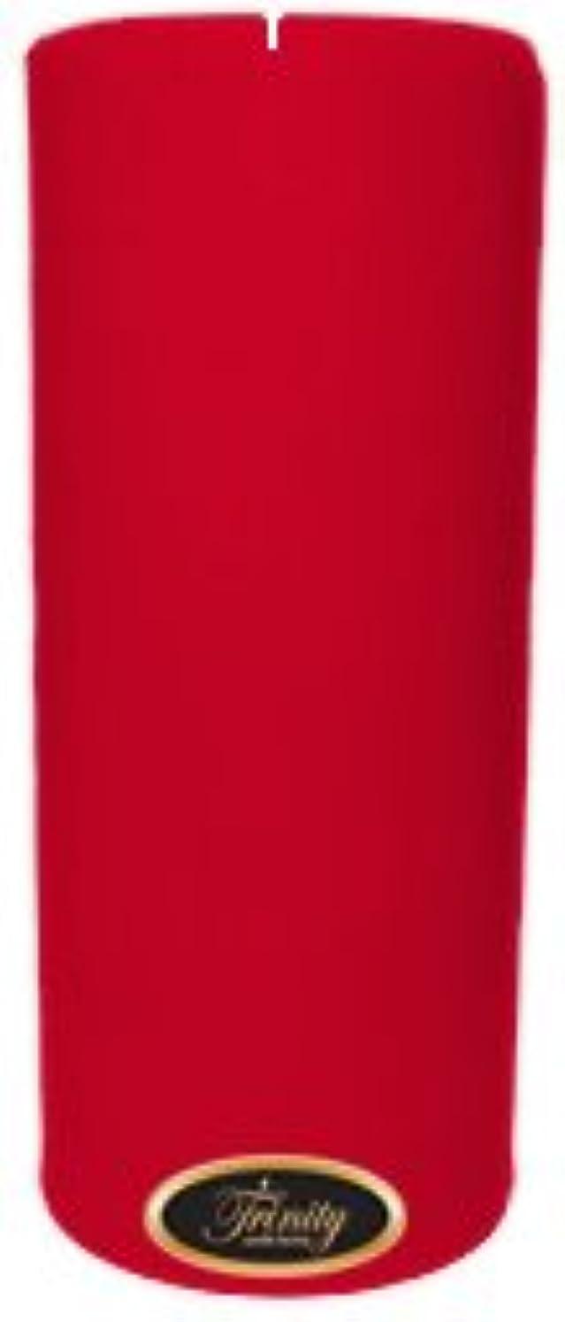 手数料フクロウ毎週Trinity Candle工場 – Holly Berry – Pillar Candle – 4 x 9