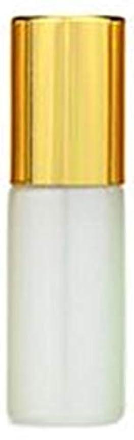 促進する高速道路法医学ShopXJ 香水 詰め替え アトマイザー ロールオン タイプ 5ml 携帯 持ち運び ミニ サイズ (ホワイト)