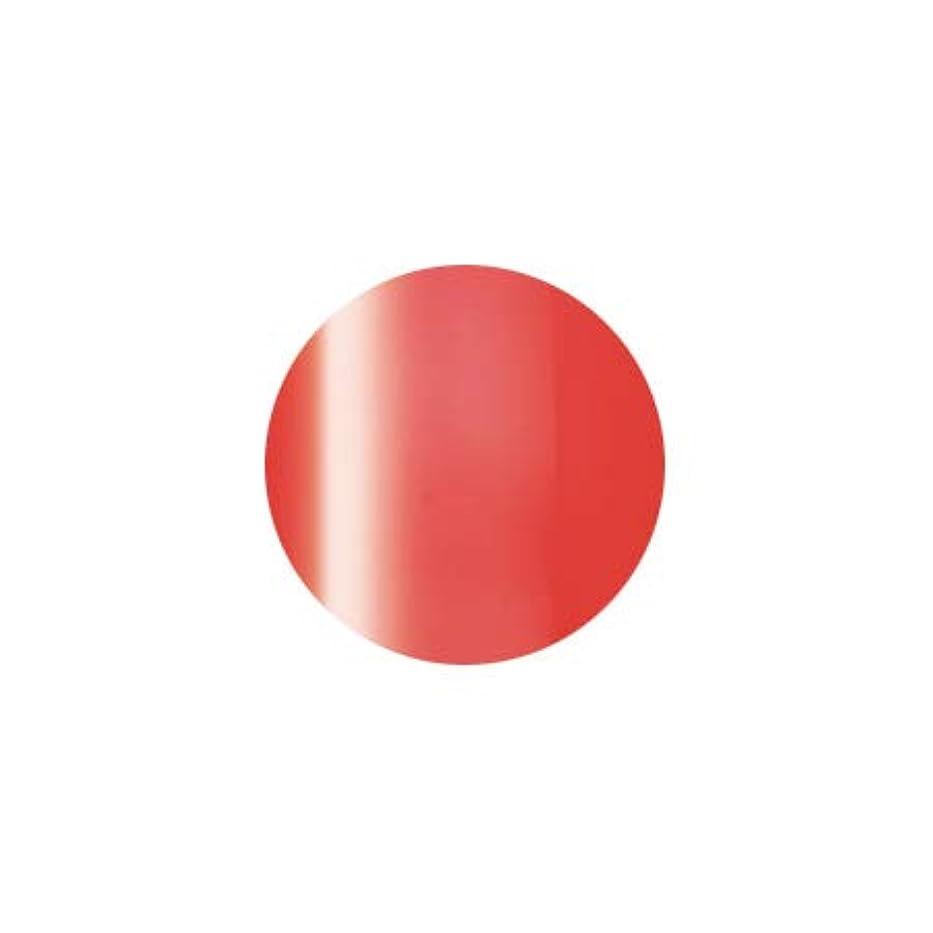 遠い行政トライアスリートPresto プレスト カラージェルミニ JC-59 2.7g