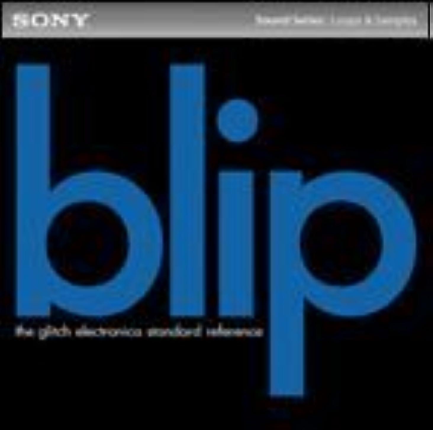 納税者振るうアーティキュレーションBlip Glitch Electronica