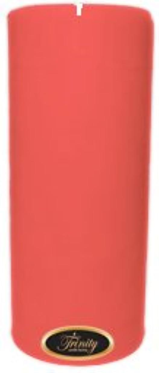 社交的良性飛行機Trinity Candle工場 – ベビーパウダー – ピンク – Pillar Candle – 4 x 9