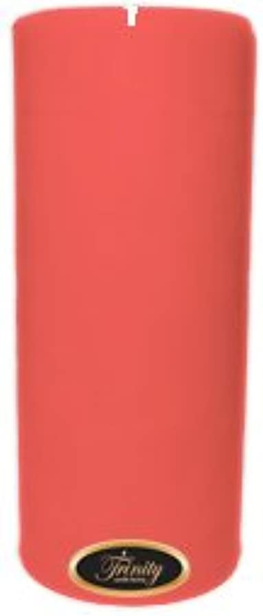 推測するカフェ穀物Trinity Candle工場 – ベビーパウダー – ピンク – Pillar Candle – 4 x 9