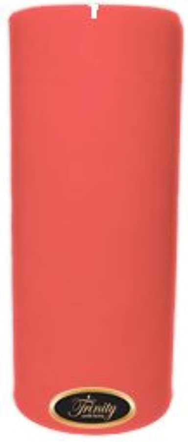 球体首保険Trinity Candle工場 – ベビーパウダー – ピンク – Pillar Candle – 4 x 9